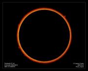 sun-ha-2005100300000310.jpg