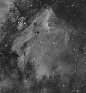 The Pelican Nebula (IC5070)