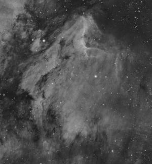 The Pelican Nebula (IC5070)