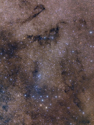 Collinder 399 - The Coathanger and nearby dark nebulae